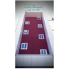 نمايي از ساختمان جديد موسسه
