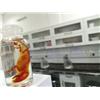 آزمايشگاه مجهز و پيشرفته زيست و شيمي